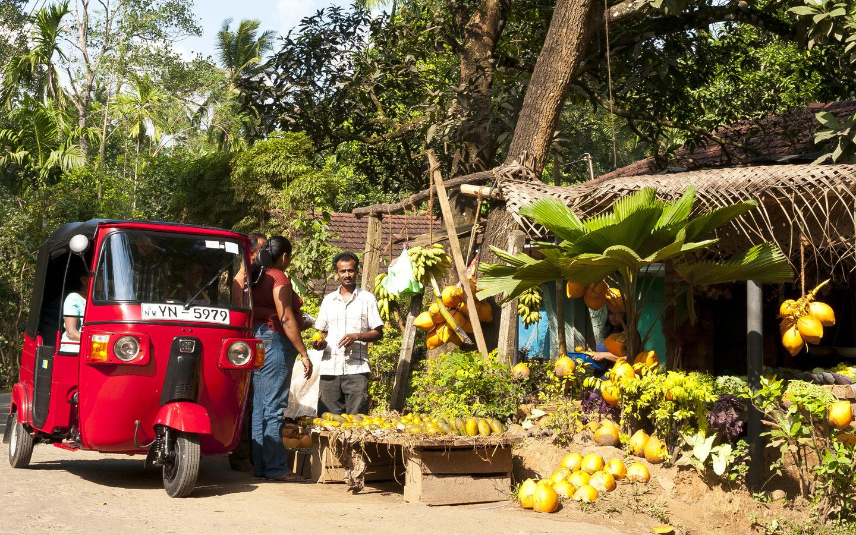 Ein Straßenmarkt in Sri Lanka mit exotischen Früchten und Gemüse und einem roten Tuk-Tuk.