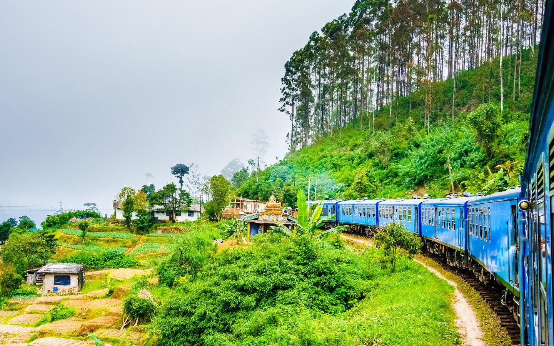 Zugreise in Sri Lanka durch Teefelder auf dem Weg in die Stadt Kandy.