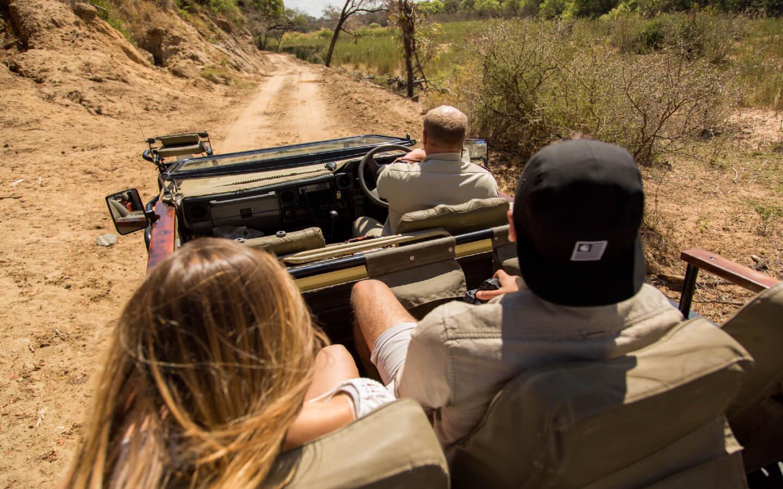 Eine Safari im Krüger Nationalpark gehört mit zu einer Erlebnisreise in Südafrika.