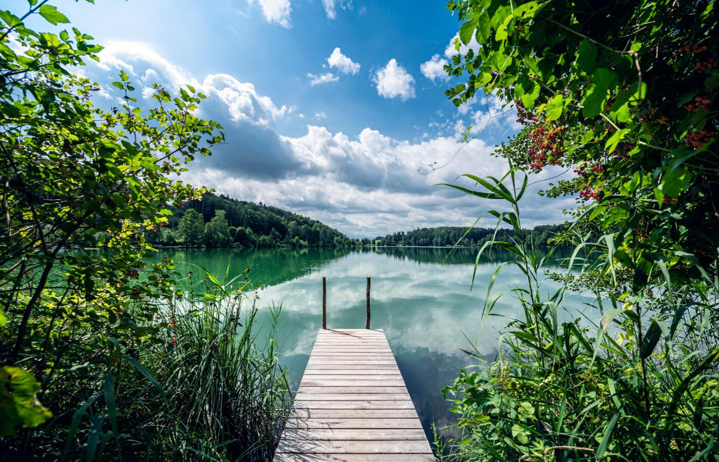 Ein Steg an einem See mitten in der Natur.