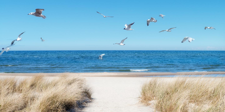 Die langen Ostsee Strände kann man während eines Ostsee-Urlaubs genießen.