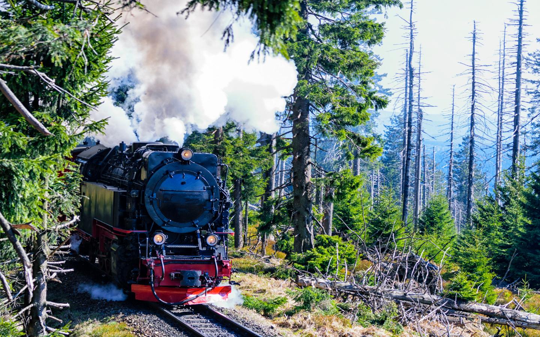 Die Harzer Brockenbahn auf dem Weg zum Brocken.