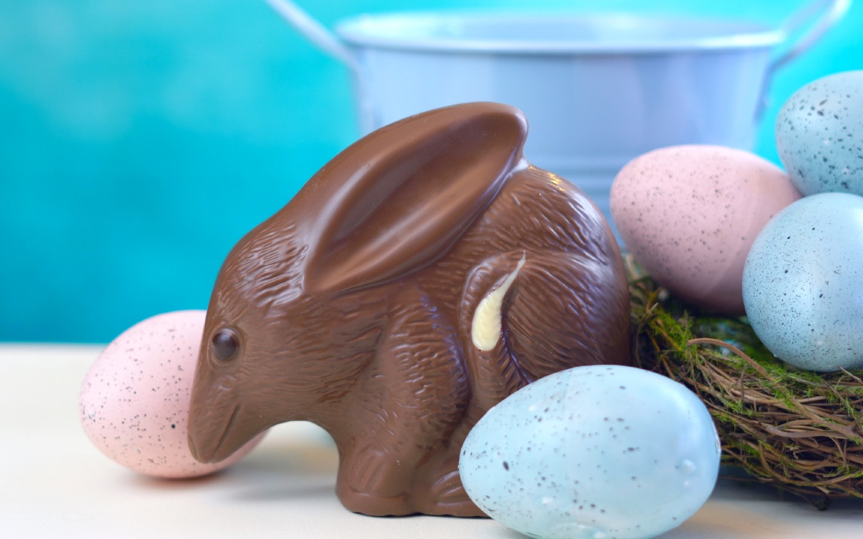 Der australische Bilby aus Schokolade gehört zur Ostertradition in Australien.