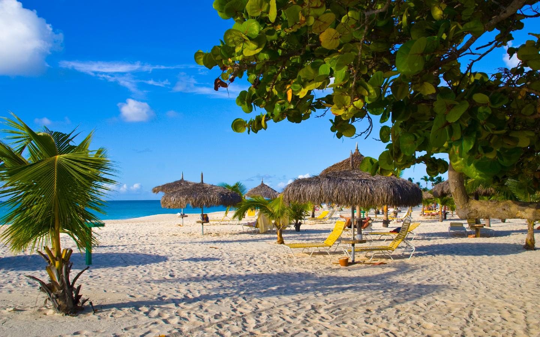 Der Eagle Beach auf der Karibikinsel Aruba.