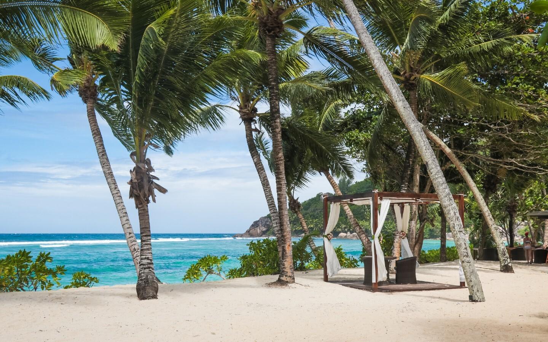 Ein Strand mit Palmen auf den Seychellen.